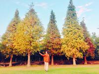 仙氣異國場景在嘉義!歐式莊園有「落羽松免費參觀」