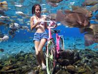 勇闖海底世界!印尼打造水下攝影棚 和魚群一起拍美照