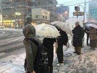 遊日注意 東京33年來首次發布低溫警報 恐出現-4度C