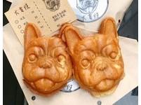 1小時完售!台南法鬥雞蛋糕「犬首燒」 2月進軍台北台中