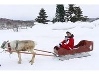 走進童話世界!日本唯一馴鹿牧場 當聖誕老人搭馴鹿雪橇
