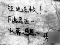 相機拍下那一刻!高醫僑生「對不起台灣」跳樓死亡實錄
