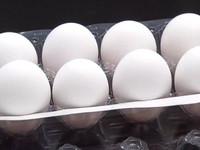 雞蛋只能盒裝賣「浪費又不環保」 網友酸:圖利廠商?