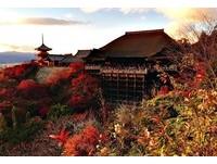 2000日圓起!這3家京都青年旅館可以輕鬆賞楓