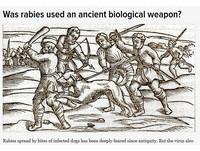 活屍病毒輸了!狂犬病100%致死 曾為古代生化武器?