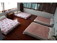 7年級甜美女生開民宿 「夢之鄉」進房仿佛陷甜蜜熱戀