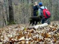 爆笑!主人浪漫求婚 狗狗衝撞攝影機毀了一切!