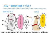 打哈欠表達不安、緊張情緒 認識狗狗的「安定訊號」