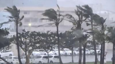 塔巴颱風帶暴風!沖繩路樹倒、建築塌 釀12輕重傷、近3.9萬戶停電
