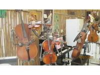 傳授製琴技巧 黃聖彥打造深山「小提琴村」