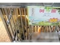 廣州餐廳紅燒無尾熊 澳客嚇壞