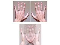 研究:左撇子或右撇子 影響思考和價值觀