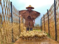 遛小孩必去!鴨鴨公園「3米扭蛋機、稻草卷」5日登場 還有餵小鴨