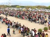 4.1萬人塞爆六福村破十年紀錄 買票要排3小時