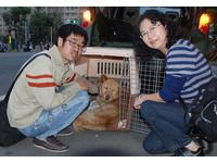 志工愛心接力500里 搶救宜蘭車禍癱瘓犬「龍龍」