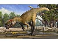 侏儸紀歐洲牠最強!葡萄牙發現10米新種蠻龍化石