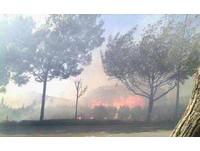 命運多舛的3月 昆明森林大火燒70公頃