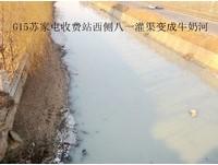 瀋陽蘇家屯驚現「牛奶河」 網友:臭氣薰天差點吐了