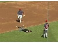 MLB/裁判蛋蛋遭球強襲 當場趴地痛到亂抬腿