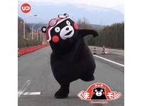 萌現身!日本「熊本熊」23日壽山動物園大跳體操秀