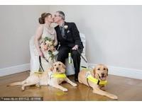 2隻導盲犬把主人導在一起 視障情侶結婚了!