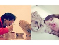 戀情公開?馮德倫貼女友愛貓照 舒淇樂:你們覺得呢