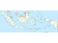 出動70架軍機向中示威 印尼南海軍演歷年規模最大