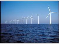 離岸風力發電影響生態? 環評:疑慮確定前不宜開發