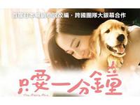 張鈞甯宣傳《只要一分鐘》 5/3現身天母寵物嘉年華
