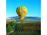 墨爾本3D娛樂 搭熱氣球遠眺維多利亞女王花園