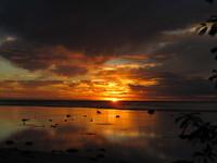 「環浪計畫」七年級生探尋即將消失的國度--南太平洋