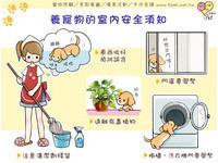 iPet愛寵物/寵物室內安全須知