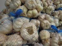 抗癌必知「腸識」 7種高纖食物清光腸道髒東西!