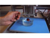 想吃水果3D列印辦得到!口味、外型自己選