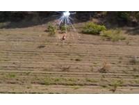 打野戰被火箭炮攻擊 「女上男下」2秒變「男上女下」