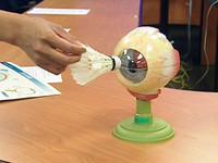 男童眼睛遭橡皮筋射中 視網膜剝離視力僅剩0.3《ETtoday 新聞雲》