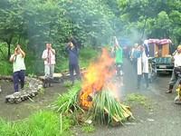 遊客湧入「慕谷慕魚」毀生態 太魯閣族人鳴槍封路