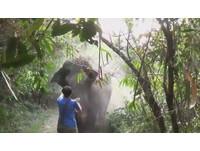 傻人傻福?男子單手擋下爆衝大象 還不忘拍張照
