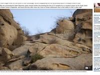 你找得到豹在哪嗎? 印度豹「神隱術」與岩石合為一體