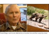 美國男遭猛獸突擊 母熊奮力擊退山獅救一命《ETtoday 新聞雲》