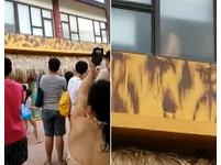 八仙樂園活春宮「騎馬秀」 遊客邊看邊尖叫:好有力!