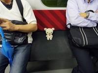 在日本,可愛是無敵的? 牛奶熊搭車見證