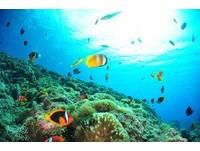 春夏限定!華信航空推「跳島三日遊」 一次玩遍蘭嶼、綠島