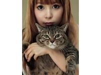 「宅男女王」中川翔子愛吃貓頭!8月來台票選最正萌貓