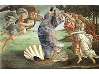 短毛虎斑貓「甜甜」齊吶喊!台灣也有療癒「貓名畫」