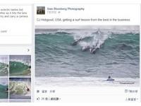 「秒殺」世界頂級選手 十幾隻海豚闖衝浪比賽