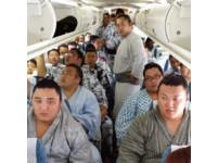 他們把飛機擠爆了! 29名相撲選手一起出遊嚇傻空姐