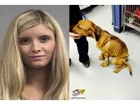 實境秀女藝人涉嫌虐狗 幼犬被餓3週全身瘦可見骨