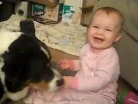 「溫柔狗」輕啄手中麥片 逗得小嬰兒咯咯笑