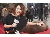 【影】採訪成人展爽喊「大XX」 大陸女記者比下賀志媛
